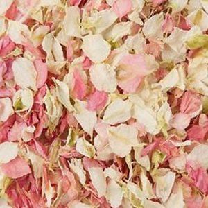 Natural Confetti Cream + Pink 1L