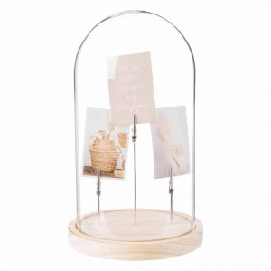 Glass and Pine Clip Photo Holder under Bell Cover
