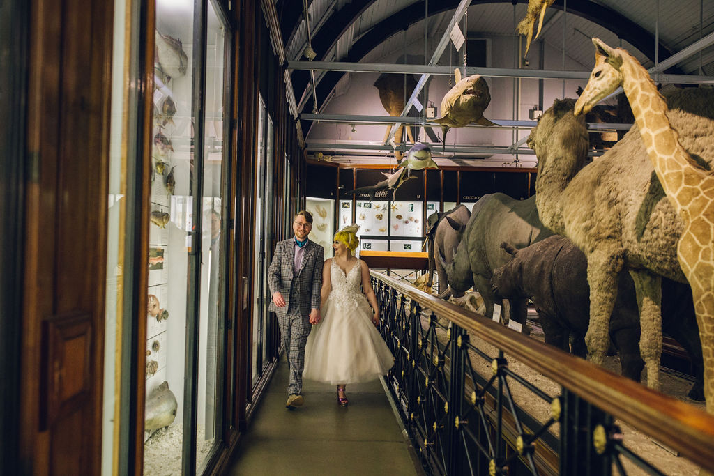 wedding at the Natural History Museum giraffes and elephants
